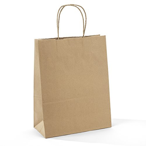 """13/"""" Large Poly Laminated Paper Party Supplies Favor Gift Bags with Handle"""